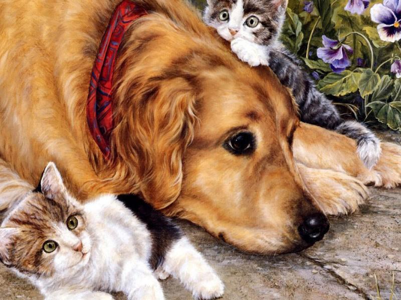 Пазл Собирать пазлы онлайн - Котята и пес
