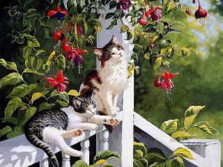 Собирать пазл Котята на крыльце онлайн