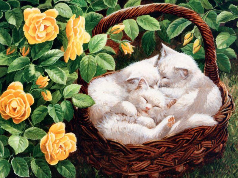 Пазл Собирать пазлы онлайн - Котята в корзинке