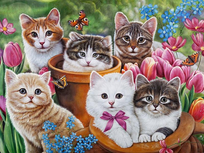 Пазл Собирать пазлы онлайн - Котята в саду