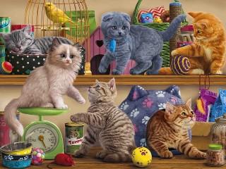Собирать пазл Котята в зоомагазине онлайн