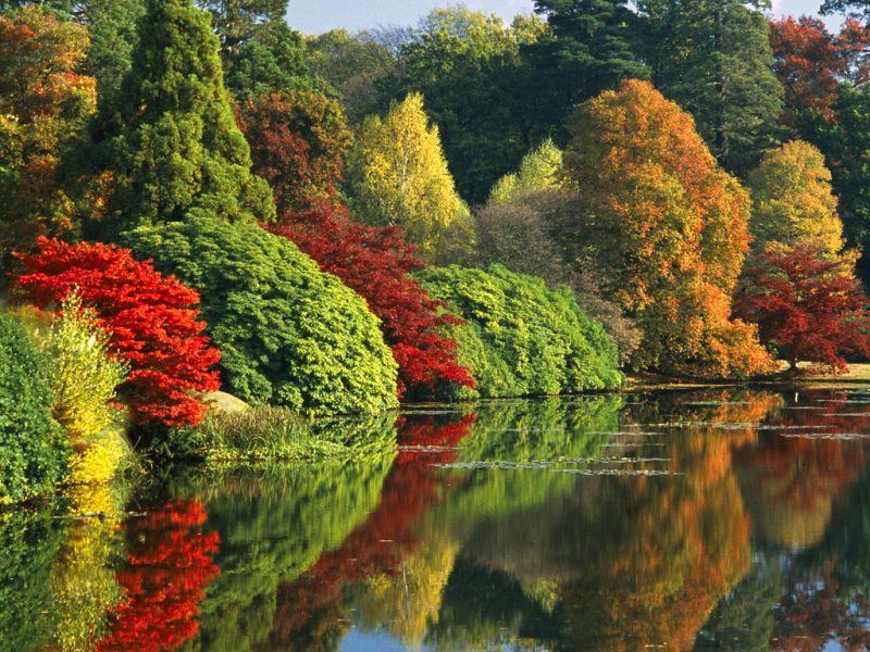 Пазл Собирать пазлы онлайн - Красавица осень