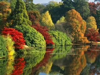 Собирать пазл Красавица осень онлайн