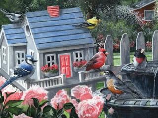 Собирать пазл Красочные птицы онлайн