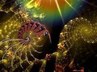 Собирать пазл Креветка и спираль онлайн