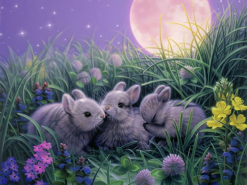 Пазл Собирать пазлы онлайн - Крольчата