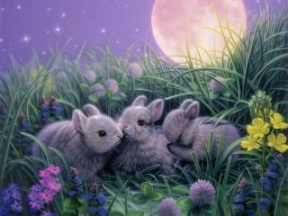 Собирать пазл Крольчата онлайн