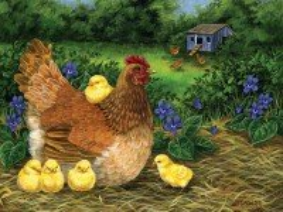 Собирать пазл Курица с цыплятами онлайн