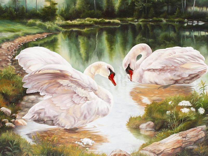часто пейзажи с лебедями картинки пожилыми
