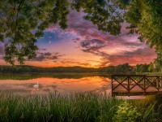 Собирать пазл Лебединое озеро онлайн
