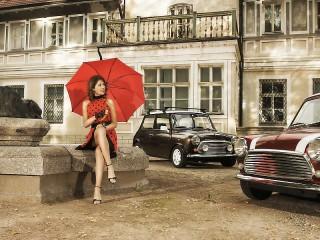 Собирать пазл Леди с красным зонтом онлайн
