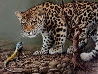 Собирать пазл Леопард и игуана онлайн