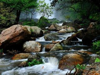 Собирать пазл Лесная речка онлайн