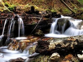 Собирать пазл Лесной ручей онлайн