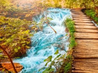 Собирать пазл Лесной мостик онлайн