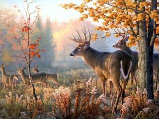 Собирать пазл Лесной олень онлайн