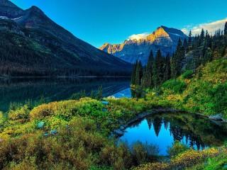 Собирать пазл Лесной пейзаж онлайн
