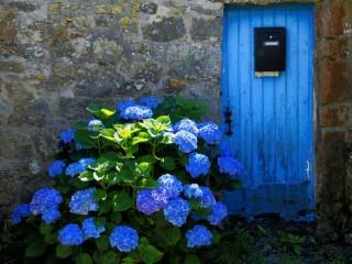Собирать пазл Лето в Бретани онлайн