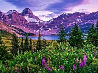 Собирать пазл Лиловые горы онлайн
