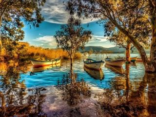 Собирать пазл Лодки на реке онлайн