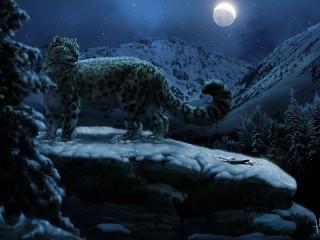 Собирать пазл Лунной ночью онлайн