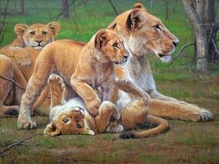 Собирать пазл Львиное семейство онлайн
