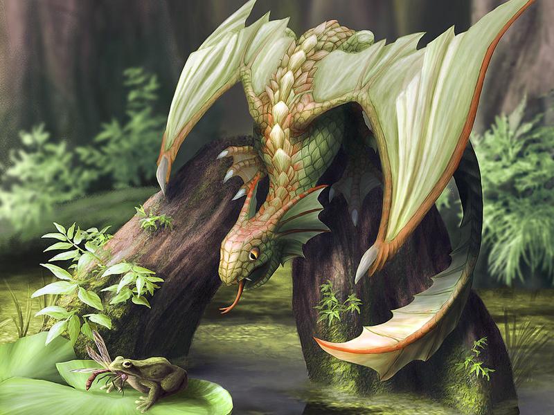 Пазл Собирать пазлы онлайн - Лягушка и дракон