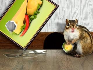Собирать пазл Любитель сыра онлайн