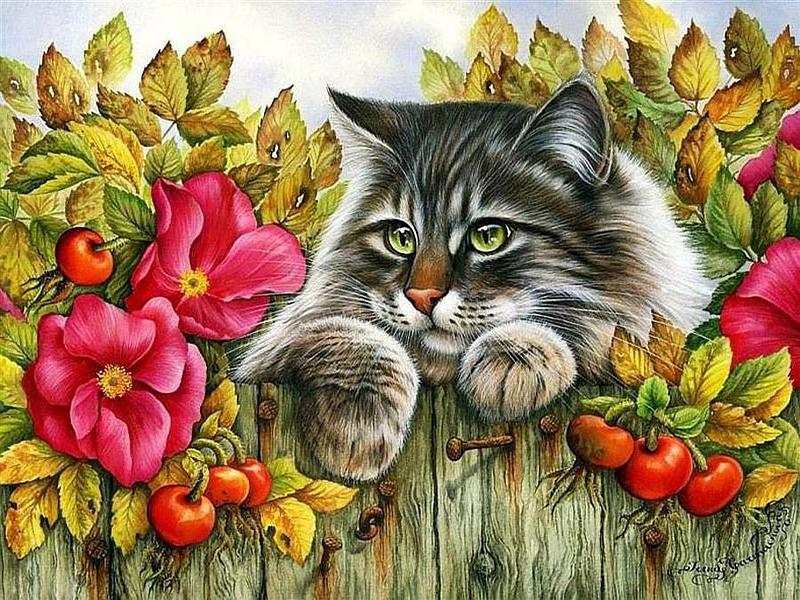 Пазл Собирать пазлы онлайн - Любопытный кот
