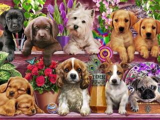 Собирать пазл Маленькие щенки онлайн