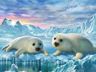 Собирать пазл Маленькие тюлени онлайн