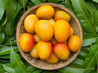 Собирать пазл Манго и листья онлайн