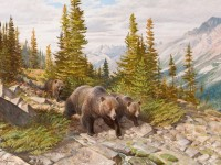 Собирать пазл Медведи в горах онлайн