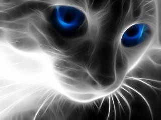 Собирать пазл Мистический котик онлайн