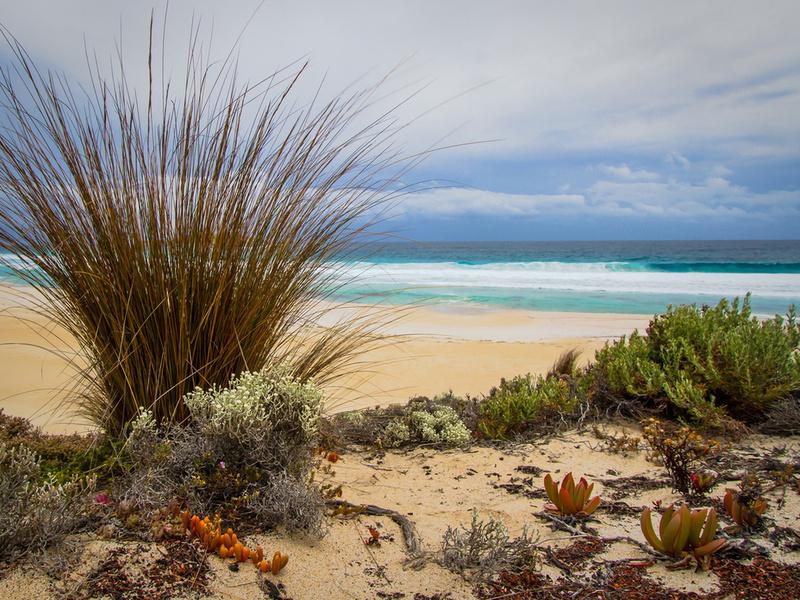 Пазл Собирать пазлы онлайн - Море пляж