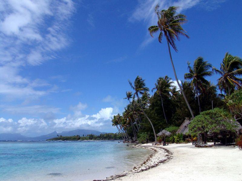 Пазл Собирать пазлы онлайн - Море пляж пальмы