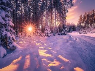 Собирать пазл Мороз и солнце онлайн