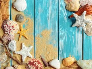 Собирать пазл Морская открытка онлайн