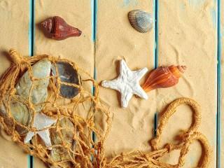 Собирать пазл Морской натюрморт онлайн