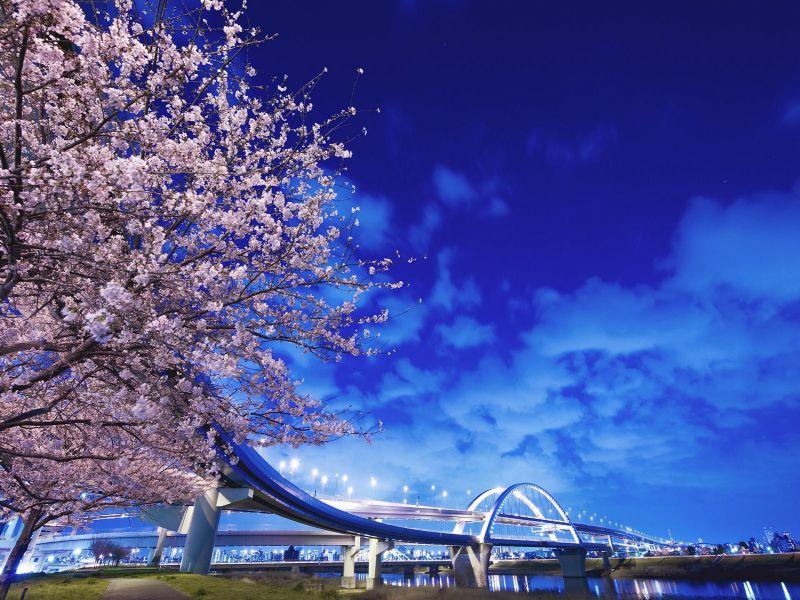 Пазл Собирать пазлы онлайн - Мост в Японии