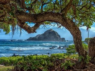 Собирать пазл На Гавайях онлайн