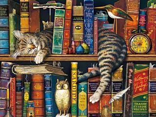 Собирать пазл На книжной полке онлайн