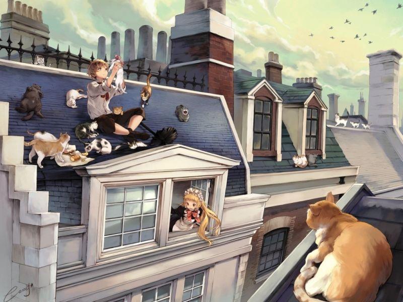 Пазл Собирать пазлы онлайн - На крыше с котами