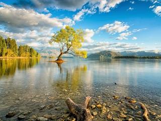 Собирать пазл На озере Ванака онлайн