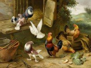Собирать пазл На птичьем дворе онлайн