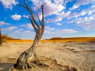 Собирать пазл Намибия онлайн