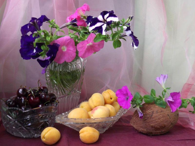 Пазл Собирать пазлы онлайн - Петуния и фрукты