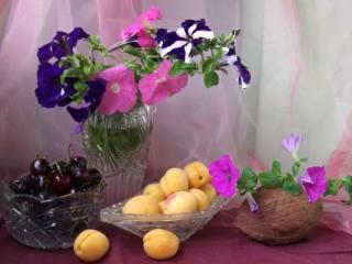 Собирать пазл Петуния и фрукты  онлайн