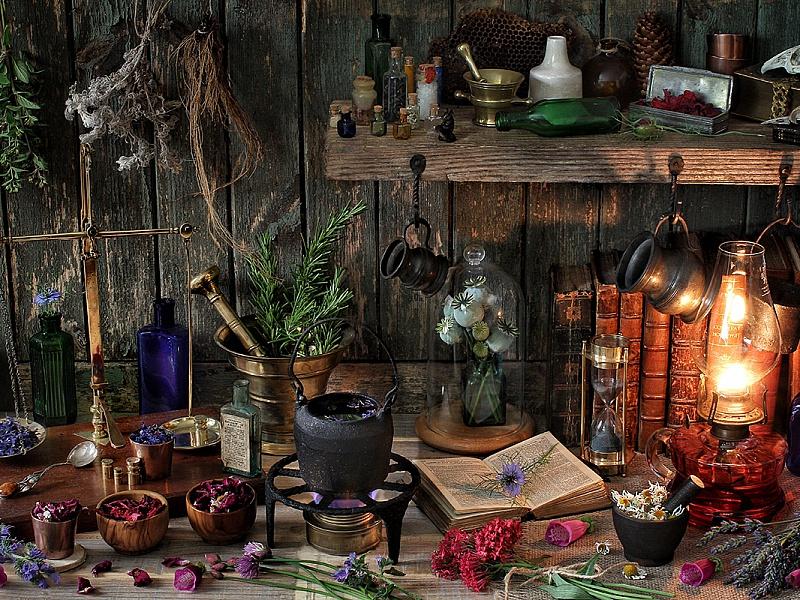 Пазл Собирать пазлы онлайн - Натюрморт ботаника