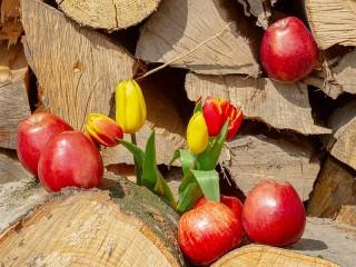 Собирать пазл Натюрморт на дровах онлайн